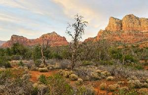 Coconino National Forest's Red Rock Country.